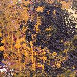 Акриловый : Холст (35см X 20см); <a href=/artworks/art?artid=c2a42330-03e5-11e2-8344-002185637249>Подробнее о картине..</a>